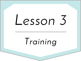 Lesson 3 Training